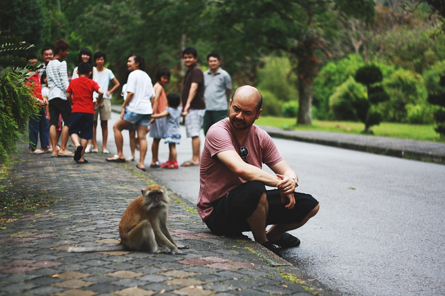 monkey-paul